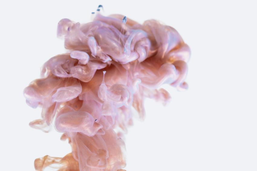 Jak wspomóc pracę mózgu? Odpowiednią dietą!